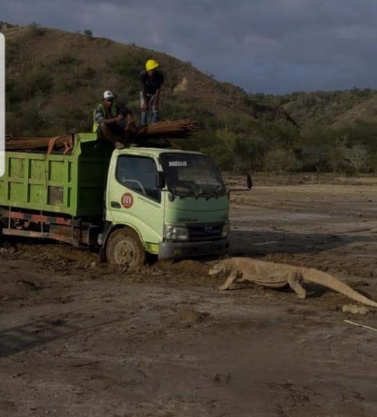 Alpha: Pemberian Izin Membangun di Taman Nasional Komodo Irasional